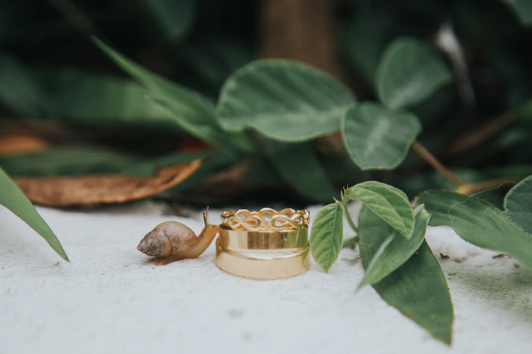 Photo of Top 7 Types Of  Wedding Rings For Men In 2020