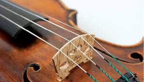 Photo of Looking for the best variety of string instruments – Here are some suggestions