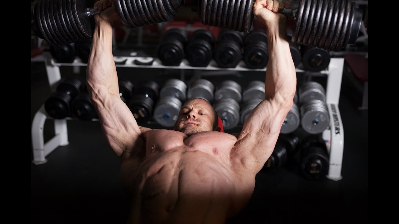 Photo of Bodybuilders and Sugar: Should they use it?