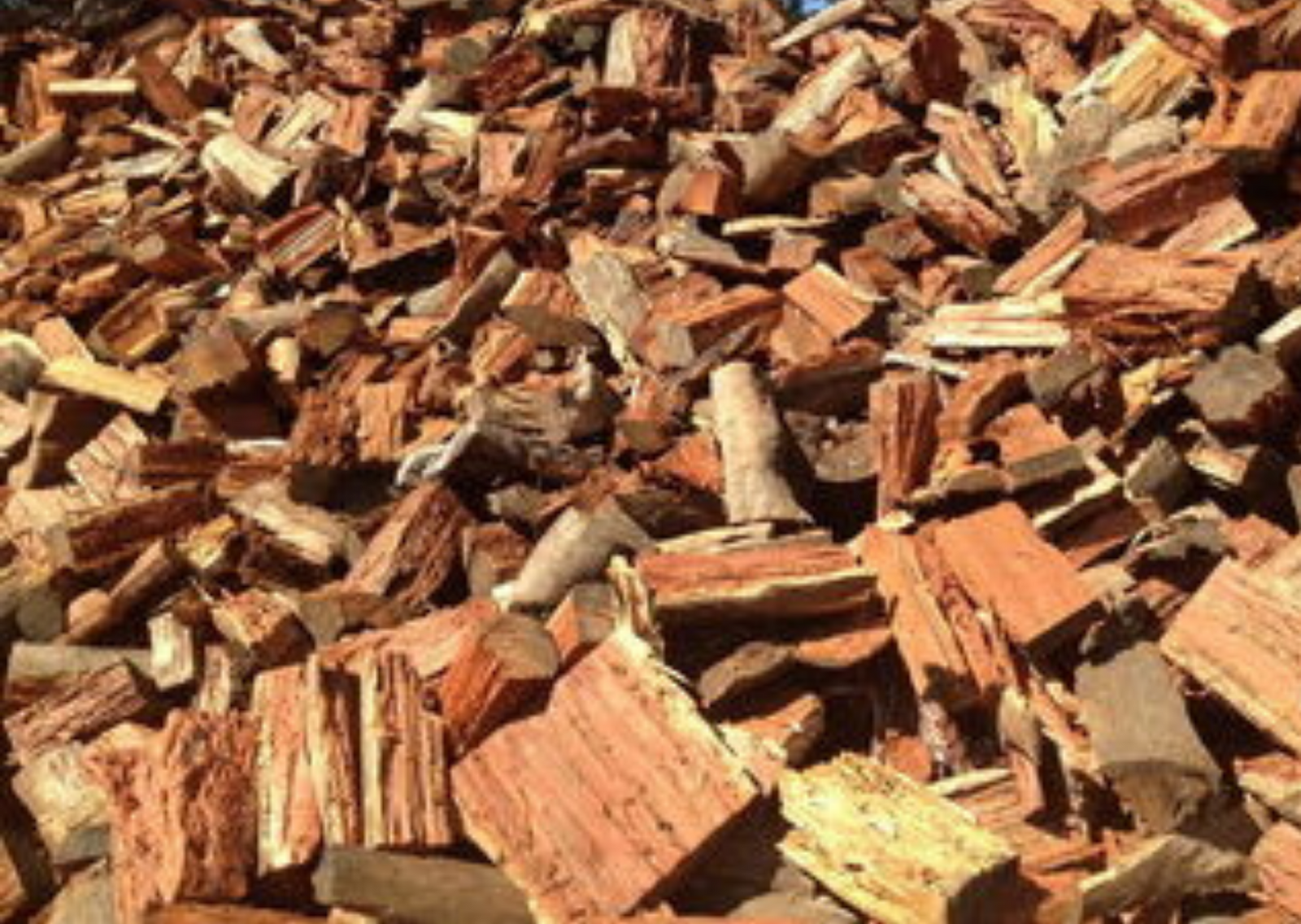 Photo of How To Choose A Firewood For Burning?