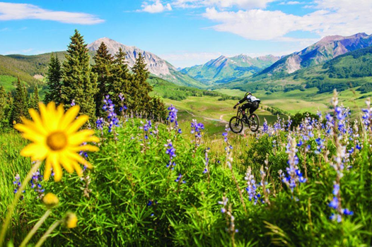 Photo of August In Colorado: What Should You Expect?